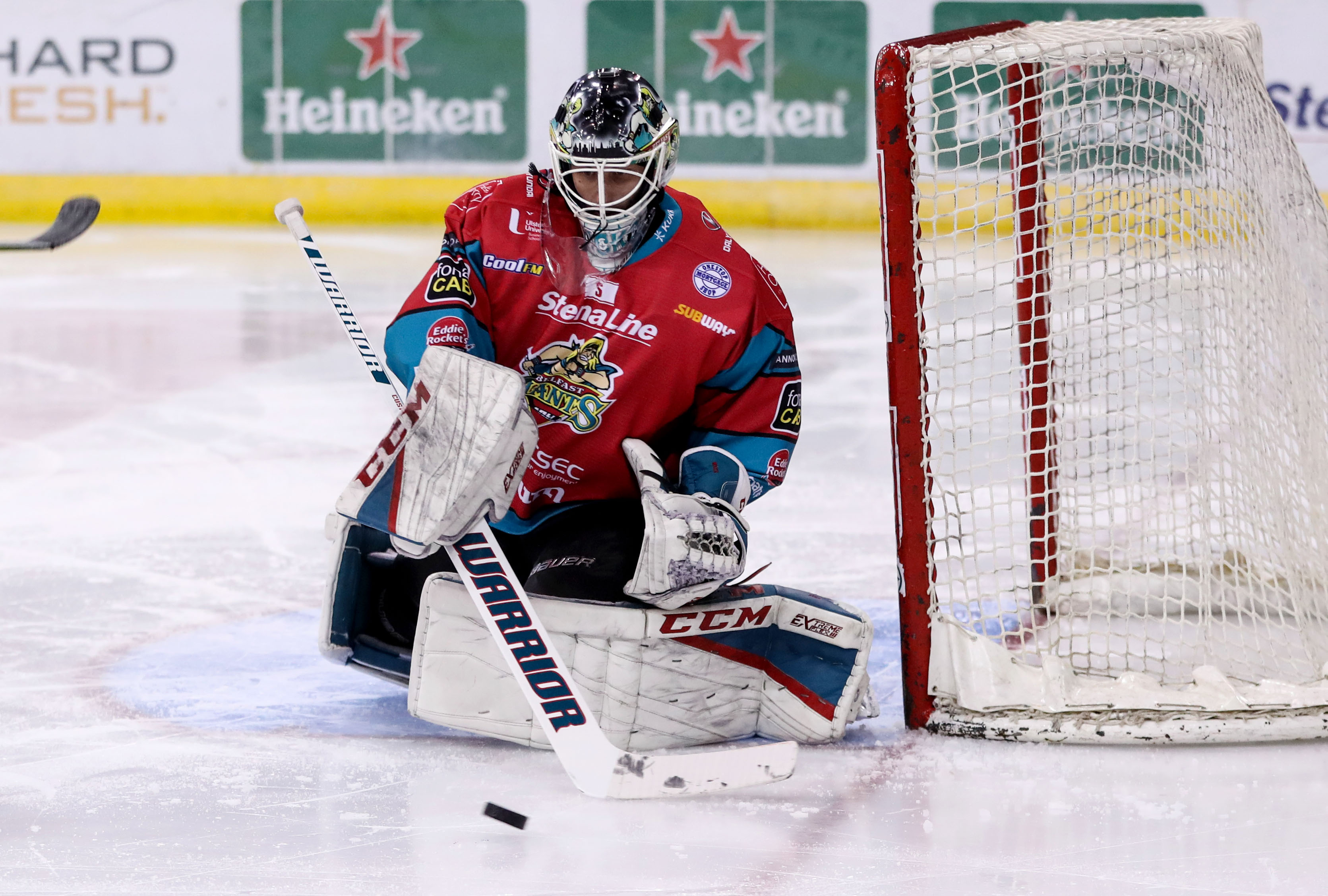 Belfast Giants v Dundee Stars - Challenge Cup Quarter Final 2nd leg